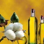 Tipos de aceites alimentarios