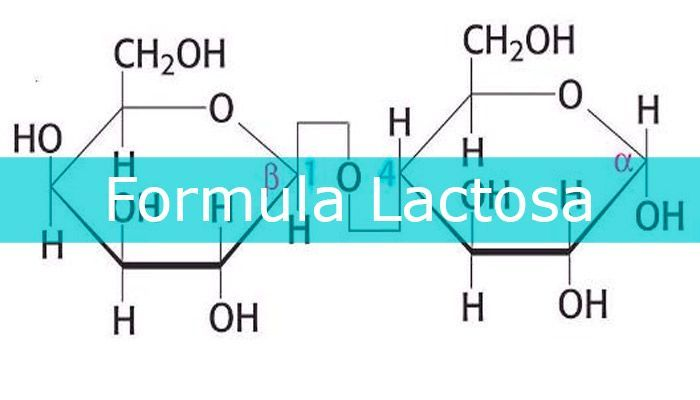 formula lactosa