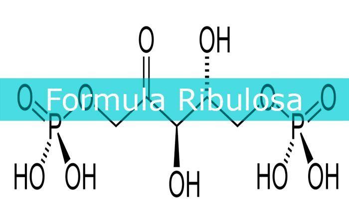 formula ribulosa