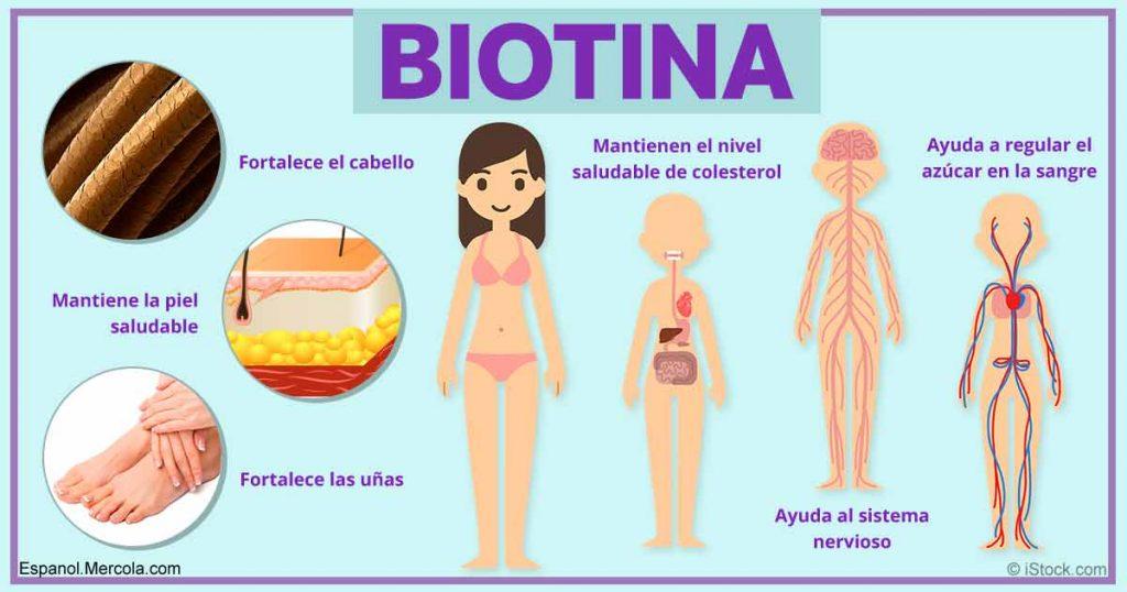 alimentos ricos en biotina
