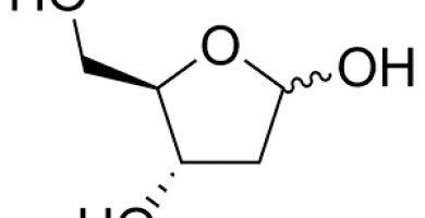 DESOXIRRIBOSA